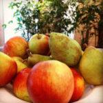 Kostenloses Obst | TIS GmbH