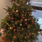 Weihnachtsbaum 2020 | TIS GmbH